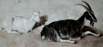 Jacques-Laurent Agasse : Two Goats