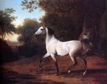 Jacques-Laurent Agasse : A Grey Arab Stallion In A Wooded Landscape