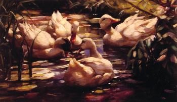 Alexander Koester : Ducks in a Forest Pond