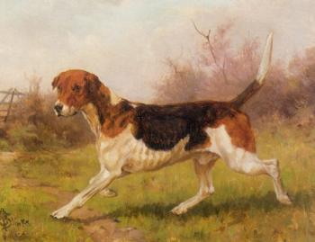 Thomas Blinks : A Foxhound
