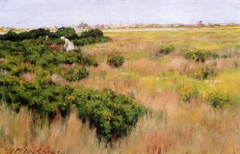 Landscape near Coney Island