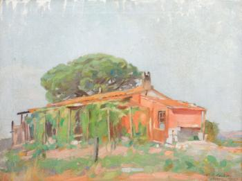 Constantin Artachino : Provence vineyards