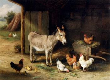 Donkey Hens And Chickens In A Barn