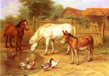 Ponies Donky and Ducks In A Farmyard