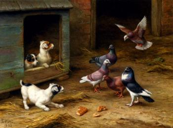 Puppies And Pigeons Playing By A Kennel