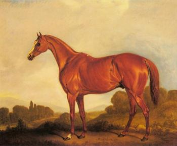 A Portrait of the Racehorse Harkaway, the Winner of Goodwood