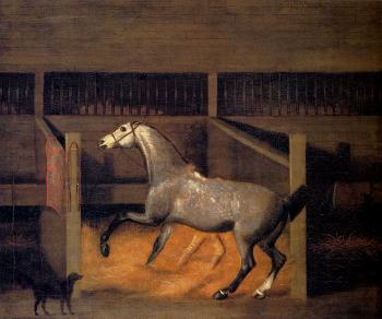 Francis Sartorius : A Dappled Grey In A Stall