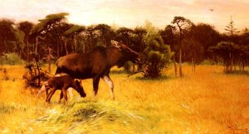 Friedrich Wilhelm Kuhnert : Moose With Her Calf In A Landscape