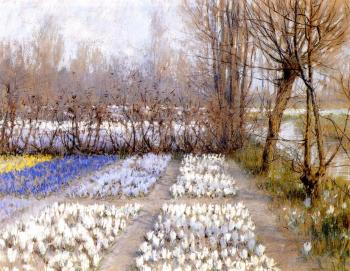 George Hitchcock : Spring Crosuc Fields