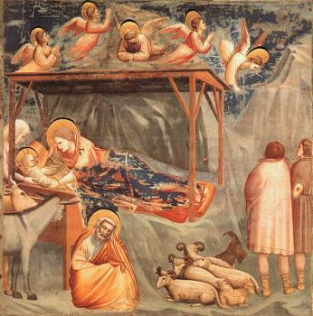 Giotto : Nativity