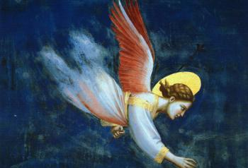 Giotto : Joachim's Dream Scenes from the Life of Joachim (Detail of an Angel)