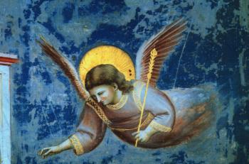 Giotto : The Presentation at the Temple Scenes from the Life of the Virgin (Detail of an Angel)