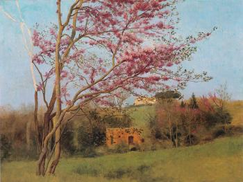 Landscape, Blossoming Red Almond