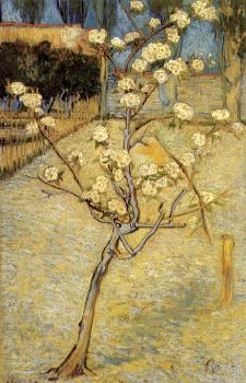 Vincent Van Gogh : Small pear tree in blossom
