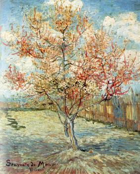 Vincent Van Gogh : Pink Peach Tress