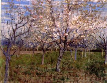 Vincent Van Gogh : Orchard with Blossoming Apricot Trees