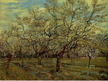 Vincent Van Gogh : Orchard with Blossoming Plum Trees