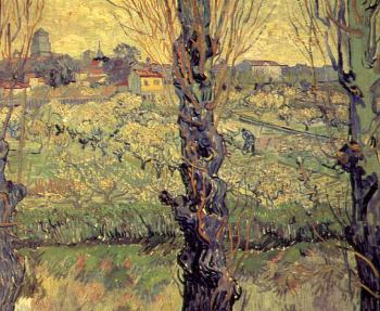 Vincent Van Gogh : Orchard in Bloom with Poplars in the Foreground