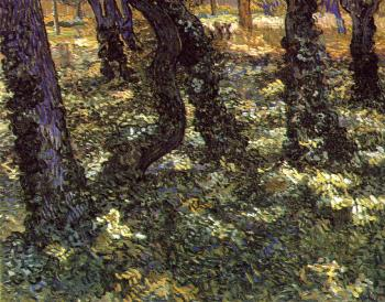 Vincent Van Gogh : Trunks of Trees with Ivy