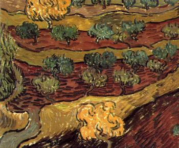 Vincent Van Gogh : Olive Orchard(Birds-EyeView)