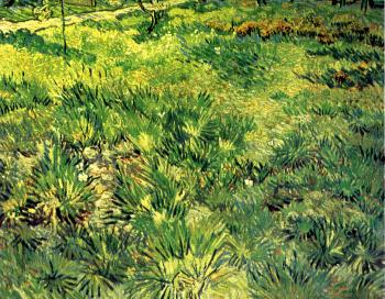 Vincent Van Gogh : Field of Grass with Flowers and Butterfies