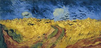 Wheat field under threatening skies wiht crows