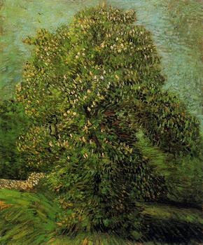 Vincent Van Gogh : Chestnut Tree in Bloom