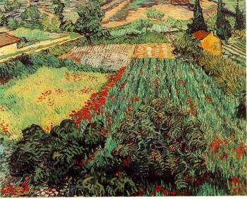 Vincent Van Gogh : Field with Poppies II