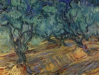 Vincent Van Gogh : Olive Grove, Bright Blue Sky