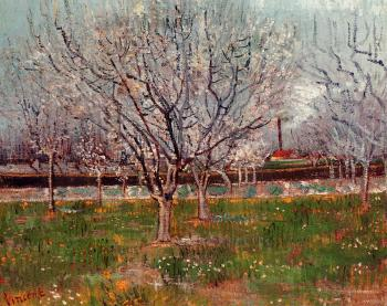 Vincent Van Gogh : Orchard in Blossom III