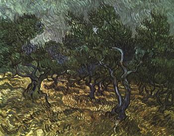 Vincent Van Gogh : The Olive Grove II