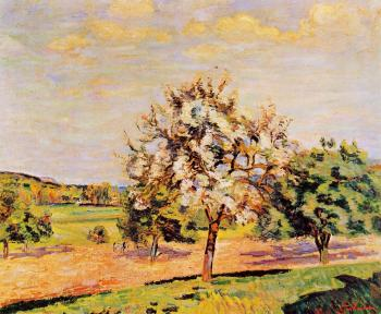 Armand Guillaumin : Apple Trees in Bloom