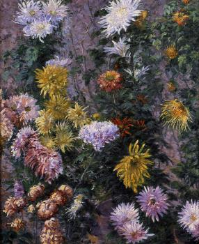 Gustave Caillebotte : White and Yellow Chrysanthemums Garden at Petit Gennevilliers