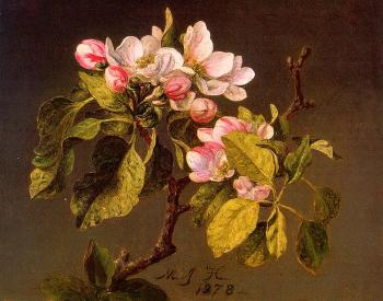 Martin Johnson Heade : Apple Blossoms