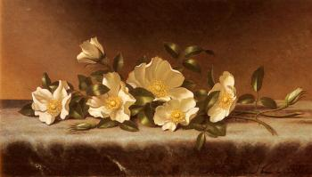 Martin Johnson Heade : Cherokee Roses On A Light Gray Cloth
