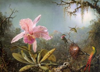 Martin Johnson Heade : Cattelya Orchid and Three Brazilian Hummingbirds