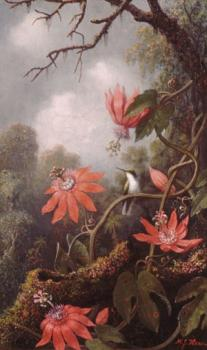 Martin Johnson Heade : Hummingbird And Passionflowers