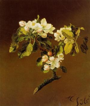 Martin Johnson Heade : A Spray of Apple Blossoms