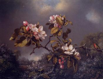 Martin Johnson Heade : Apple Blossoms and Hummingbird