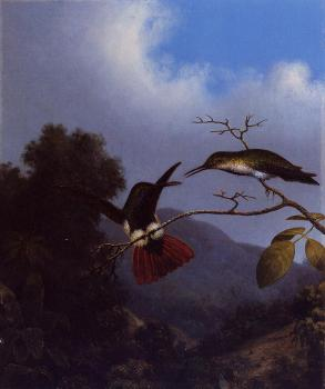 Martin Johnson Heade : Black-Throated Mango