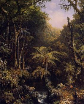 Martin Johnson Heade : Brazilian Forest II