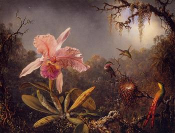 Martin Johnson Heade : Cattleya Orchid and Three Brazilian Hummingbirds