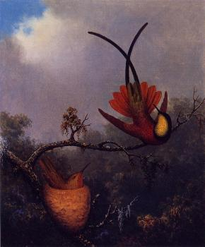 Martin Johnson Heade : Crimson Topaz