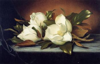 Martin Johnson Heade : Giant Magnolias