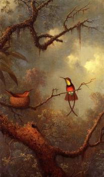 Martin Johnson Heade : Hummingbirds