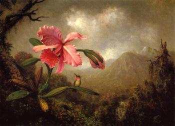 Martin Johnson Heade : Orchid and Hummingbird near a Mountain Waterfall