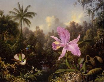 Martin Johnson Heade : Orchid and Two Hummingbirds II