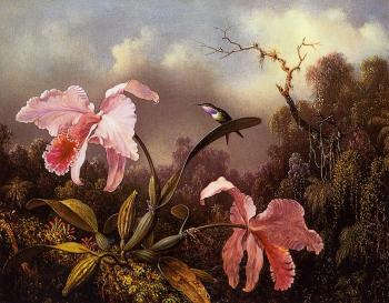 Martin Johnson Heade : Orchids and Hummingbird II