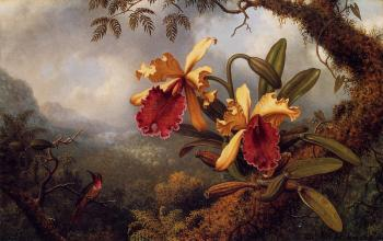 Martin Johnson Heade : Orchids and Hummingbird IV