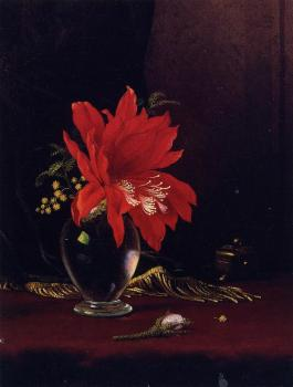 Martin Johnson Heade : Red Flower in a Vase